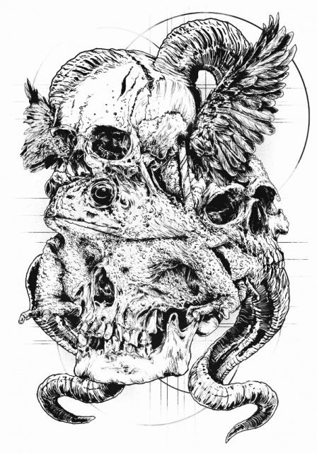 Идеи эскизов черепов от rafal wechterowicz