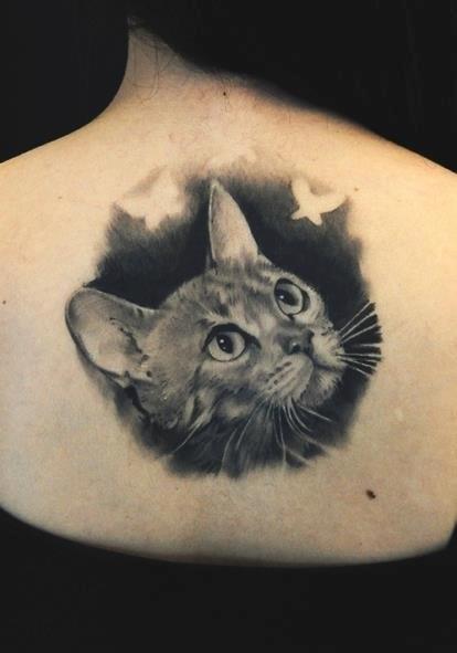 Коты тату (7)