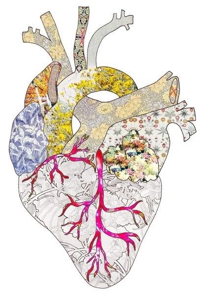 Эскизы сердца (4)