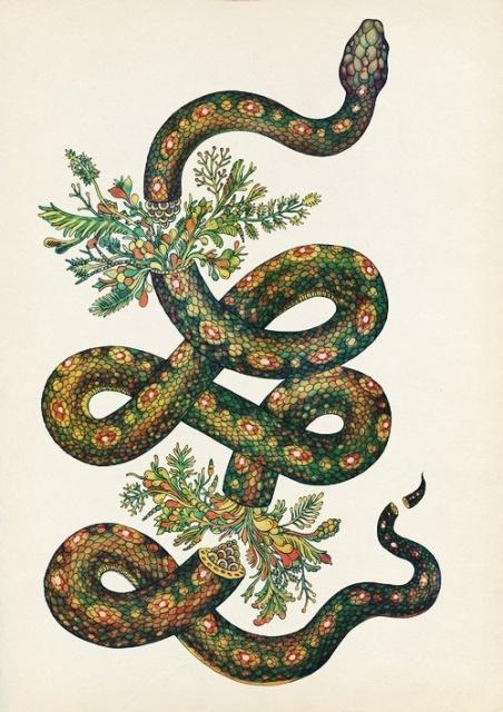 Эскизы змеи 2013 (4)