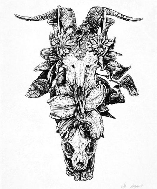эскиз девушки череп (3)