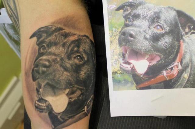 татуировки животные (8)