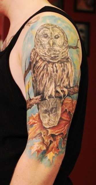 татуировки сова (4)