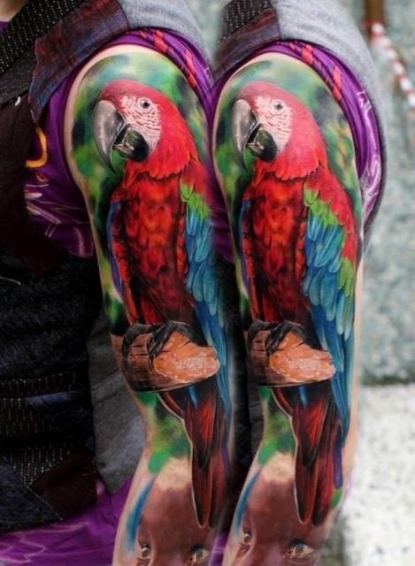 попугай ара тату (1)