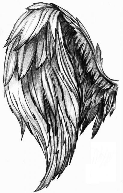 Эскизы крыльев (6)