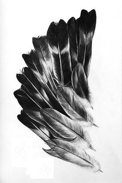 Эскизы крыльев (4)