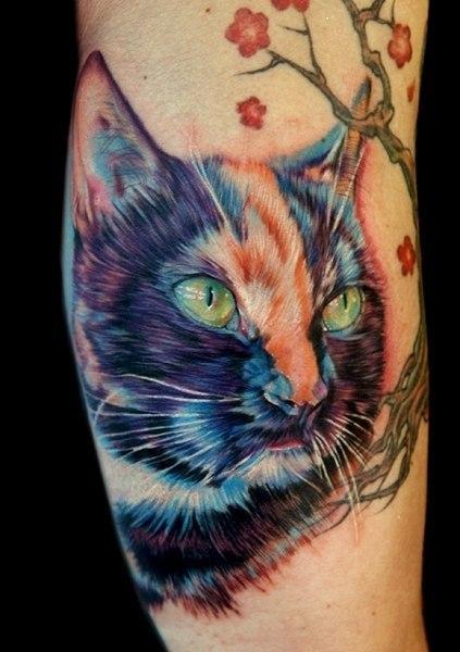 татуировки кот руки (4)