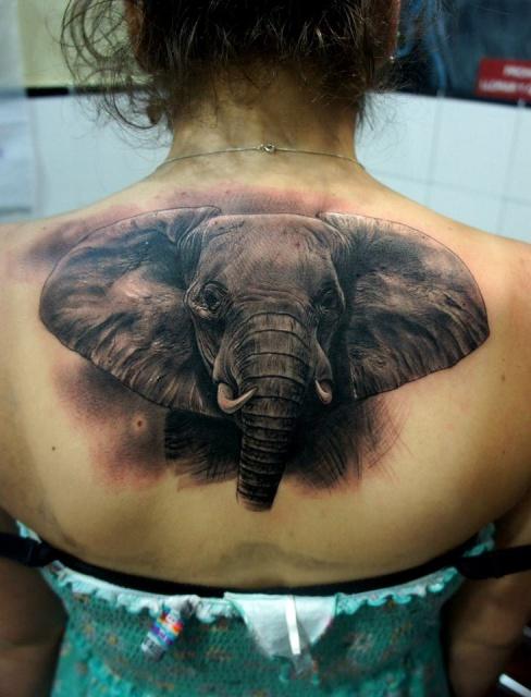 Татуировка слона на женской спине