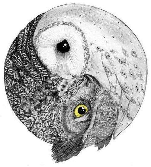 Эскизы татуировок сова