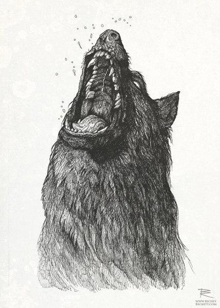 эскизы животных (3)