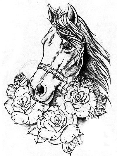 эскизы лошади (3)