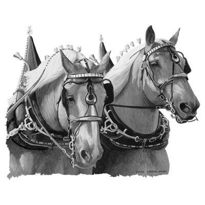 эскизы лошади для татуировок (3)