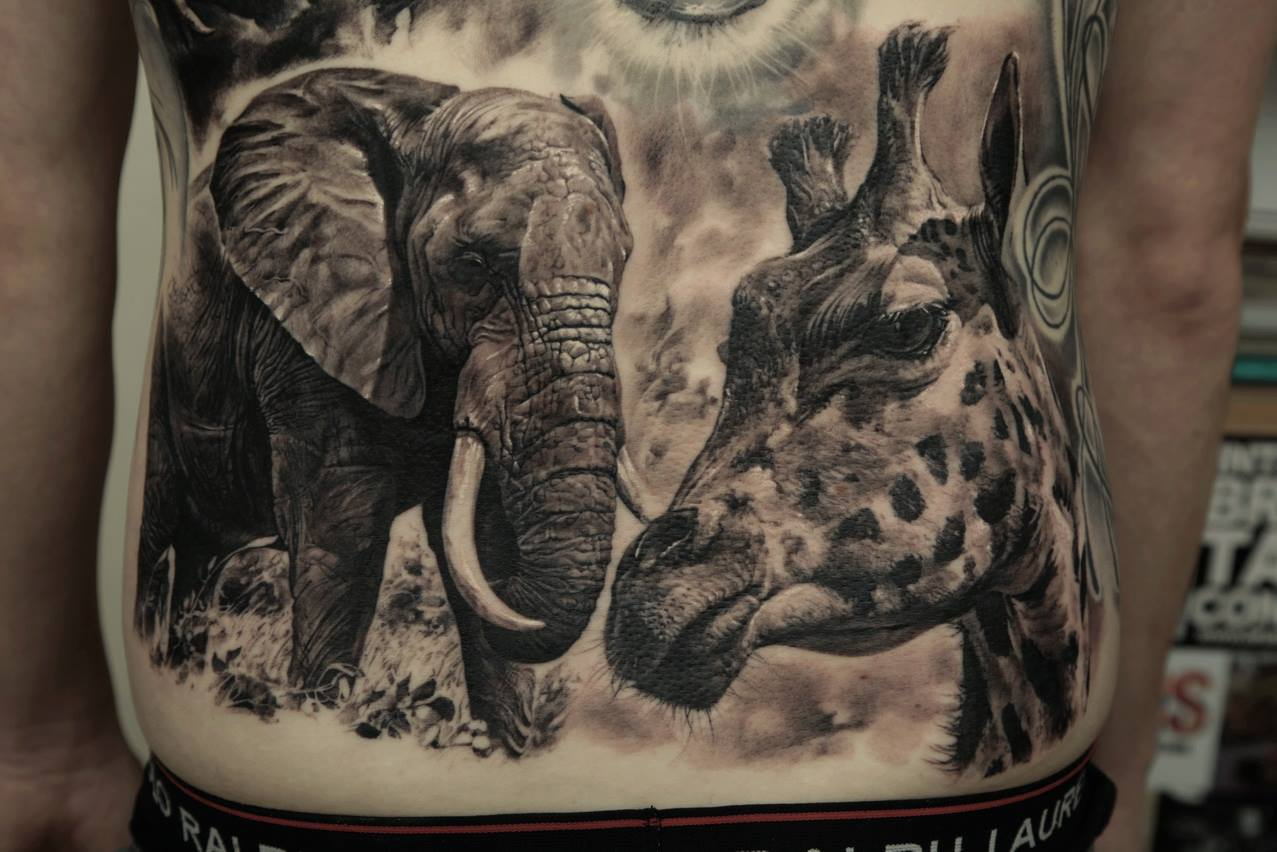 жираф и слон на животе