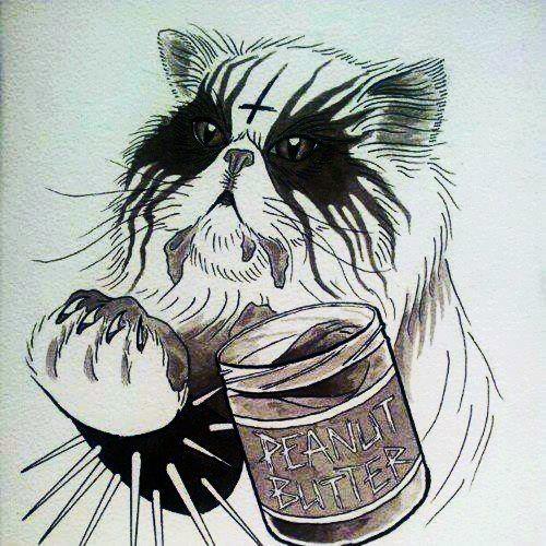 эскиз красивого кота на фото