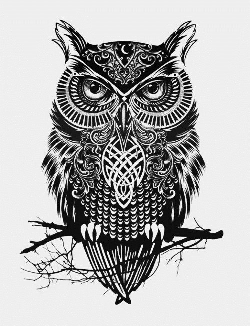 эскизы и значение татуировки совы (3)