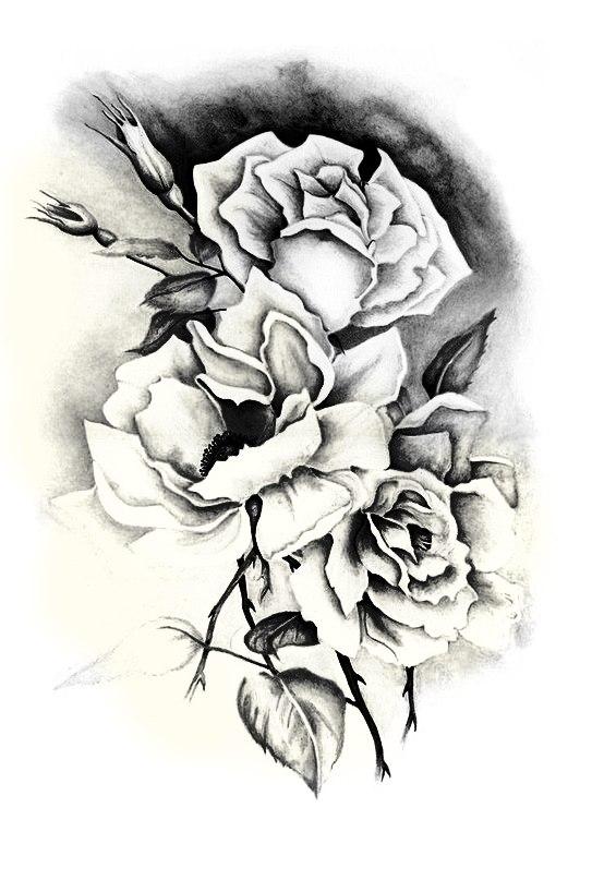 Подборка фотографий с эскизами роз