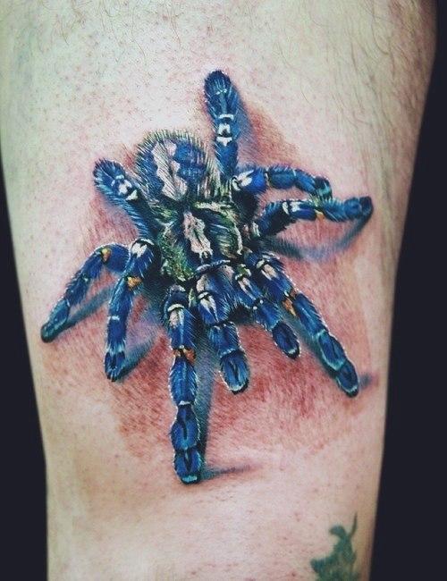 фото татуировки паука (2)