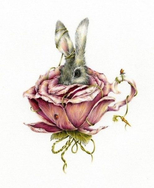 фото эскиза заяц в капусте