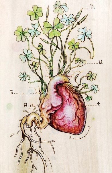 фото татуировки эскиз сердце (2)