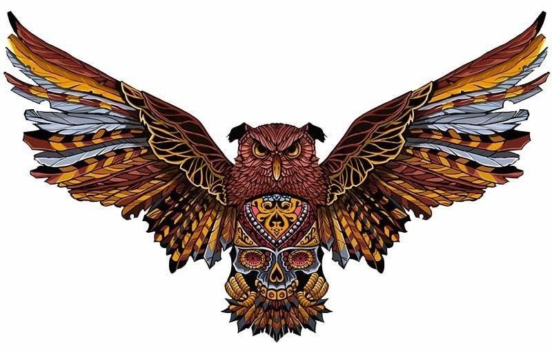 эскиз совы (1)