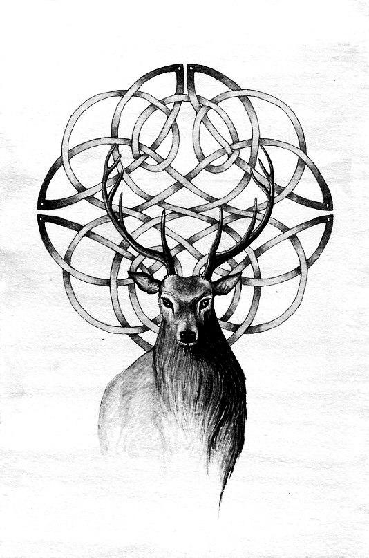 фото эскиз олень (3)
