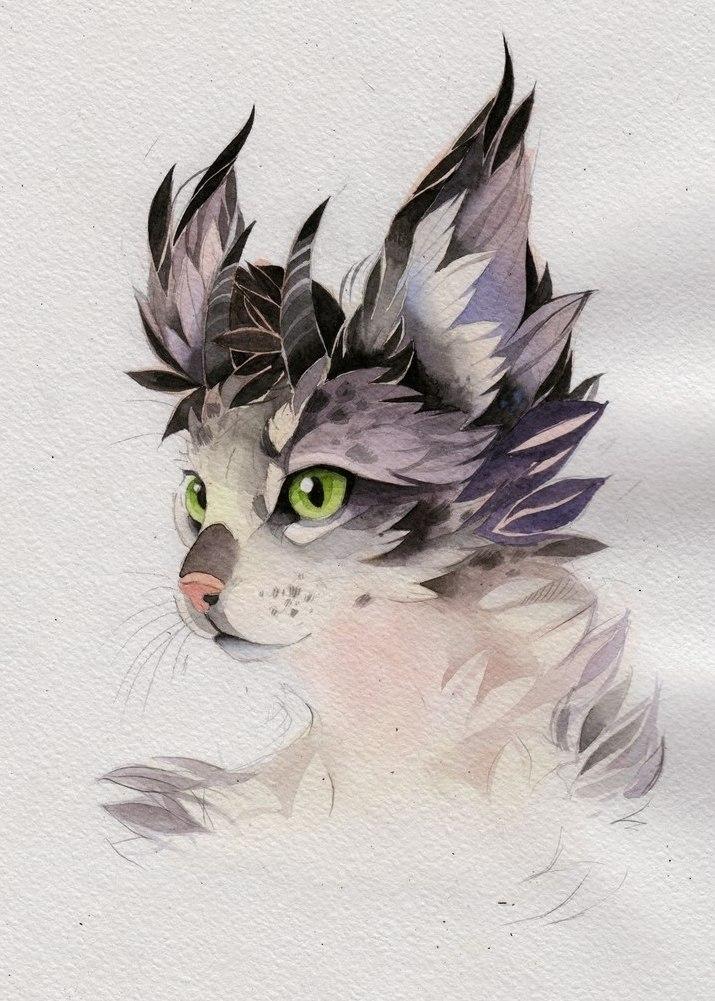 эскиз кот (6)